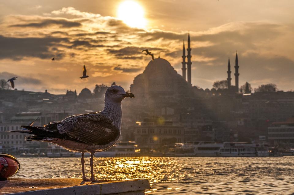 Turquie pas cher dernière minute